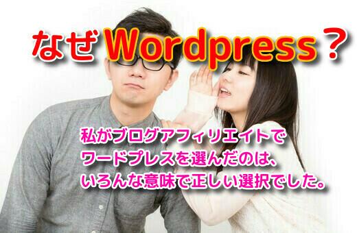ブログアフィリエイトをWordPressで実践する本当の理由